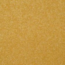 Shaw Floors Roll Special Xv293 III 12′ Daffodil 00205_XV293