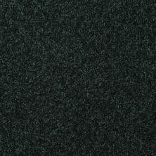 Shaw Floors Roll Special Xv293 III 12′ Emerald 00308_XV293