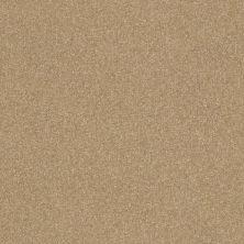 Shaw Floors Roll Special Xv293 III 12′ Sea Grass 00700_XV293