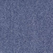 Shaw Floors Roll Special Xv375 Castaway 00400_XV375