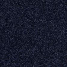 Shaw Floors Roll Special Xv375 Evening Sky 00403_XV375