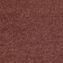 Shaw Floors Roll Special Xv375 Flower Pot 00610_XV375