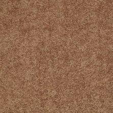 Shaw Floors Roll Special Xv375 Desert Sunrise 00721_XV375