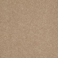 Shaw Floors Roll Special Xv407 Golden Lab 00200_XV407