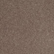 Shaw Floors Roll Special Xv407 Fox Hollow 00704_XV407