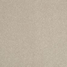 Shaw Floors Roll Special Xv408 Halo 00101_XV408