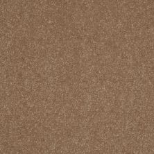 Shaw Floors Roll Special Xv408 Gingersnaps 00201_XV408
