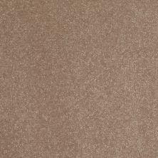 Shaw Floors Roll Special Xv408 Wheat Bread 00702_XV408