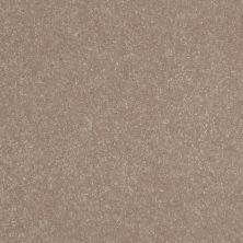 Shaw Floors Roll Special Xv409 Crisp Khaki 00103_XV409