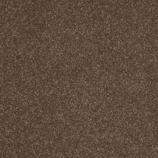 Shaw Floors Roll Special Xv409 Green Tea 00300_XV409