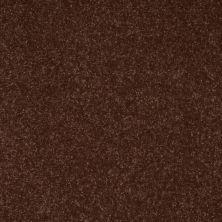 Shaw Floors Roll Special Xv409 Raisin 00709_XV409