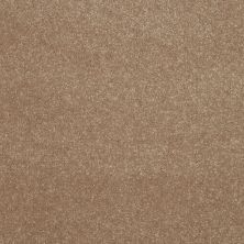 Shaw Floors Roll Special Xv410 Antique Parchment 00102_XV410