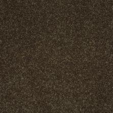 Shaw Floors Roll Special Xv410 Silken Moss 00304_XV410