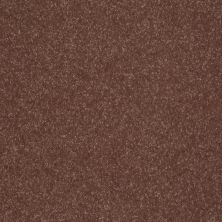 Shaw Floors Roll Special Xv410 Baked Pretzel 00701_XV410