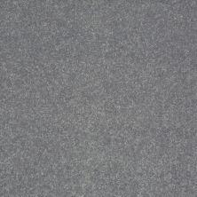 Shaw Floors Roll Special Xv411 Silver Dollar 00500_XV411