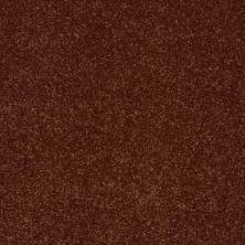 Shaw Floors Roll Special Xv411 Cinnamon Roll 00600_XV411