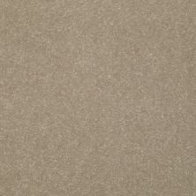 Shaw Floors Roll Special Xv411 Wheat Bread 00702_XV411