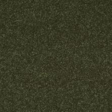 Shaw Floors Roll Special Xv412 Passion Vine 00303_XV412