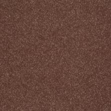 Shaw Floors Roll Special Xv412 Baked Pretzel 00701_XV412