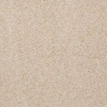 Shaw Floors Roll Special Xv420 Optimistic 00103_XV420