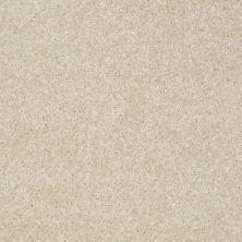 Shaw Floors Roll Special Xv420 Stucco 00105_XV420