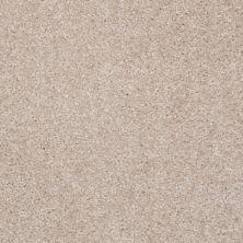 Shaw Floors Roll Special Xv420 Utterly Beige 00106_XV420