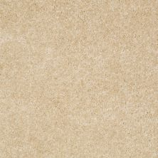 Shaw Floors Roll Special Xv420 Toasted Coconut 00108_XV420