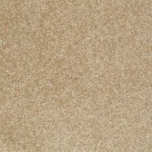 Shaw Floors Roll Special Xv420 Leather 00700_XV420