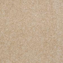 Shaw Floors Roll Special Xv420 Saw Dust 00701_XV420