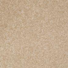 Shaw Floors Roll Special Xv420 Crisp Linen 00702_XV420