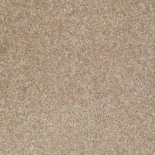 Shaw Floors Roll Special Xv420 Portabello 00706_XV420