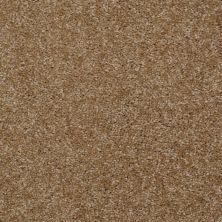 Shaw Floors Roll Special Xv420 Braided Rug 00707_XV420
