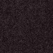 Shaw Floors Roll Special Xv420 Plum 00900_XV420