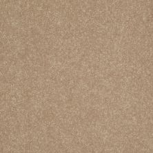 Shaw Floors Roll Special Xv425 Blond Ambition 00200_XV425