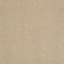 Shaw Floors Roll Special Xv425 Alluring 00700_XV425