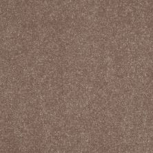 Shaw Floors Roll Special Xv425 Dutch Cocoa 00703_XV425