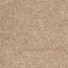 Shaw Floors Roll Special Xv442 Beach Grass 00101_XV442