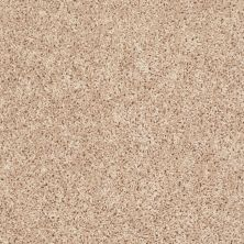 Shaw Floors Roll Special Xv442 Highland Buff 00200_XV442