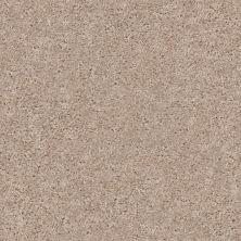 Shaw Floors Roll Special Xv462 Aura 00104_XV462