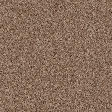 Shaw Floors Roll Special Xv462 Sierra Hills 00702_XV462