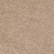 Shaw Floors Roll Special Xv463 Macaroon 00104_XV463