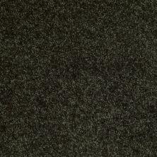 Shaw Floors Roll Special Xv463 Jaden 00302_XV463