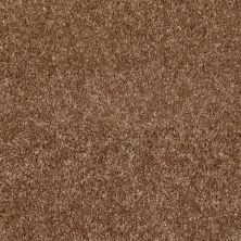 Shaw Floors Roll Special Xv463 Ridgecrest 00702_XV463