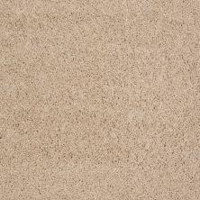 Shaw Floors Roll Special Xv477 Creamy 00103_XV477