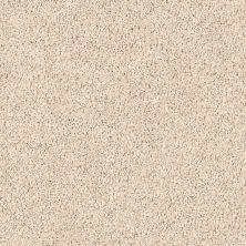 Shaw Floors Roll Special Xv477 Broadstone 00104_XV477