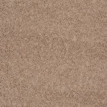 Shaw Floors Roll Special Xv477 Sandpoint 00105_XV477