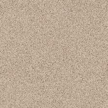 Shaw Floors Roll Special Xv477 Storm 00109_XV477