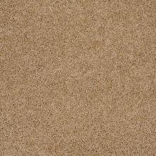 Shaw Floors Roll Special Xv477 Filoli Honey 00201_XV477