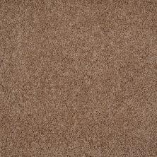 Shaw Floors Roll Special Xv477 Twill 00700_XV477