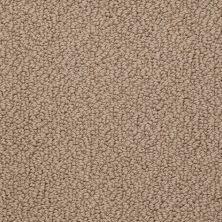 Shaw Floors Roll Special Xv480 Sandstone 00118_XV480